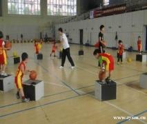 成都青羊区少儿篮球培训周末班