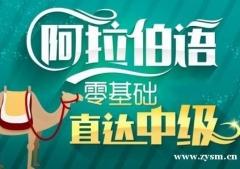 南京阿拉伯语商务培训班