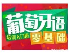 杭州初级葡语全日制班培训课程